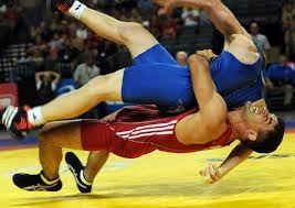Azerbaijani wrestler wins silver at Nanjing Olympics