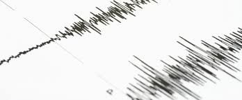 Earthquake hits Shamakhi