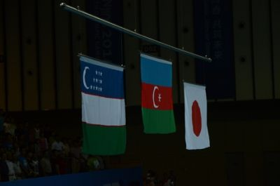 Azerbaijan`s third gold at Nanjing Olympics PHOTO