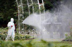 Japan confirms more dengue infections