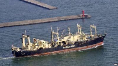 Japan to restart whaling