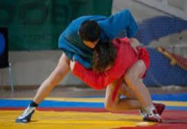 Azerbaijani sambo wrestlers win two world medals