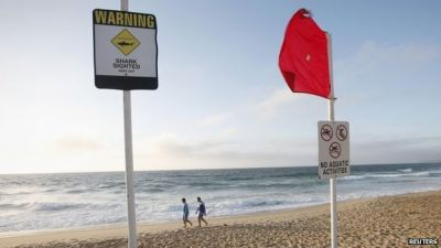 Man dies in shark attack