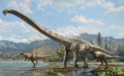 New dinosaur found in Chile
