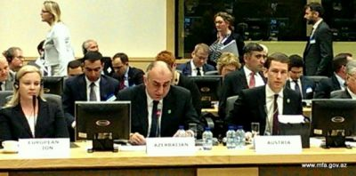 Elmar Mammadyarov addressed at the Council of Europe