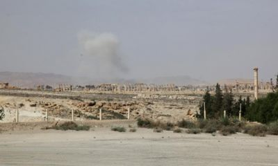 IS controls 50% of Syria after seizing Palmyra