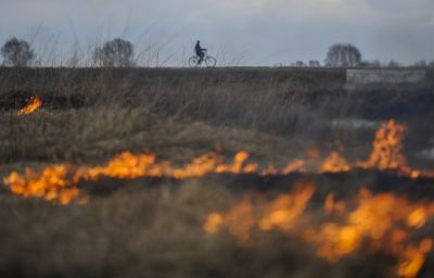 Wildfires raging on 13,000 hectares
