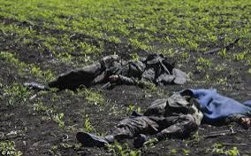 Two Ukrainian soldiers  killed in clashes
