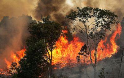 Лесные пожары в Канаде эвакуированы более 130 туристов