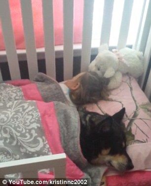 Mom  finds rescue dog asleep under the covers next to her daughter