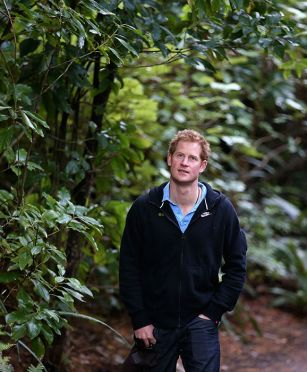 Prince Harry joins fight against poachers