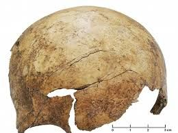 7,000-year-old mass grave foundin Europe