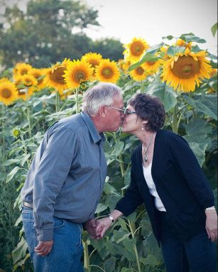 Husband plants four miles of sunflowers in tribute to his late wife