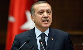 Erdogan calls for early elections for November 1