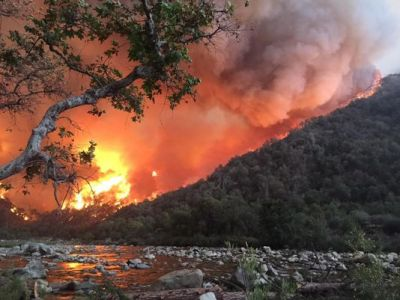 Wildfire in California: 1 dead