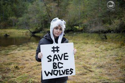 Майли Сайрус провела выходные с дикими медведями и волками ФОТО