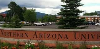 Shooting in Arizona University: one dead, three wounded