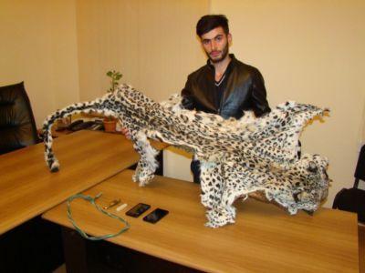 IDEA выражает обеспокоенность в связи с убийством леопарда ФОТО
