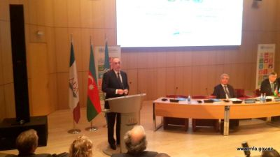 The fact that those resolutions remain on paper does not serve the credibility of the UN Azerbaijani FM says