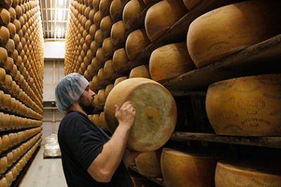 Украден элитный сыр за 43 тысячи долларов