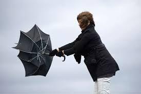 В Баку усилится ветер