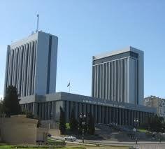 New committees established in Milli Mejlis
