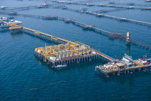 ЧП на «Нефтяных камнях» три нефтяника пропали
