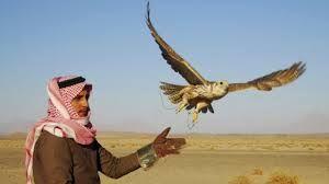 В иракской пустыне похищены 16 катарских охотников