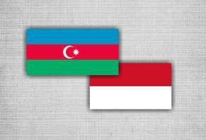 Азербайджан и Индонезия будут сотрудничать в сфере энергетики