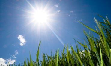 Синоптики обещают солнечную погоду