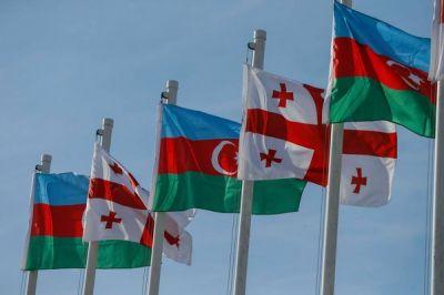 Азербайджанцы составляют второй по численности народ в Грузии