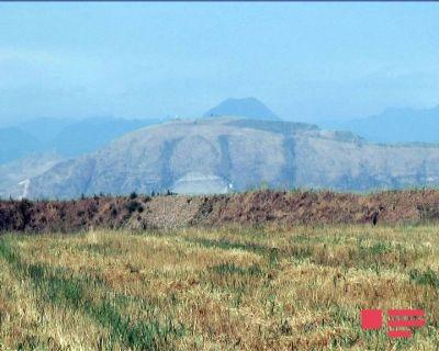 Армяне расхищают природные ресурсы Азербайджана