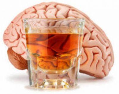 Beyində insanın alkoqola münasibətini müəyyən edən mexanizm tapılıb