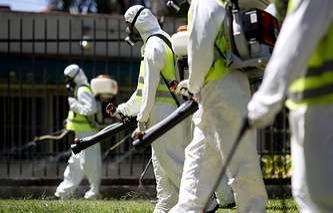 Meksika rəsmiləri: 1280  hamilə qadın Zika virusuna yoluxub