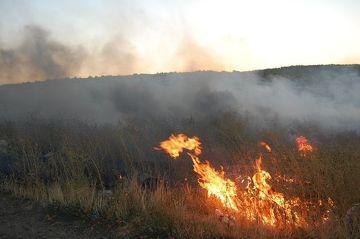 В Шемахинском районе борются с крупным пожаром