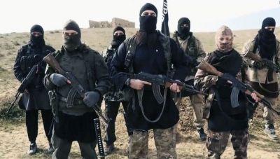 """Россия и США никогда не обсуждали совместную борьбу с """"Исламским государством"""""""