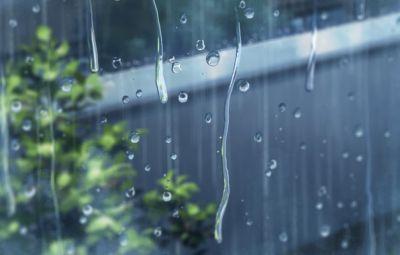 Завтра будет дождливая погода с грозами