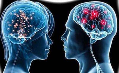 Beynimiz haqqında 13 maraqlı fakt...