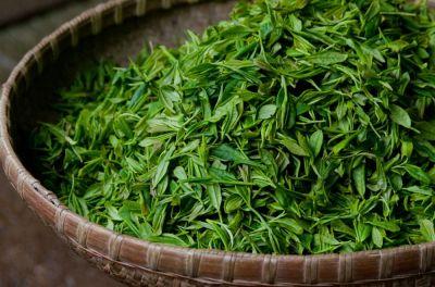 Çində Qızıl qiymətinə satılan çay...