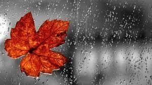 Yağışlı hava davam edəcək