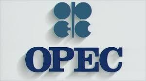 """OPEC: """"2040-cı ildə qlobal enerji tələbatı 40 faiz artacaq"""""""