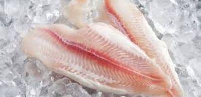 Dondurulmuş balıq alarkən diqqətli olun!