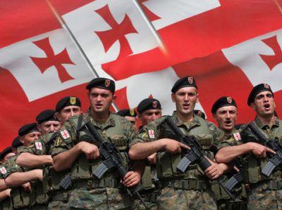 Gürcüstan Hərbi Hava Qüvvələrinin komandanı istefa verdi
