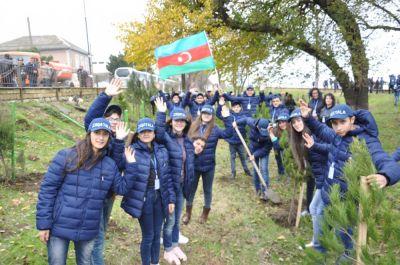 """Tur-aksiya iştirakçıları """"Hərəmiz bir ağac əkək"""" aksiyasına qoşulublar"""