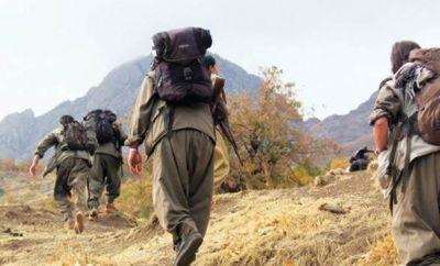 Son 1 həftədə 94 PKK terrorçusu öldürülüb