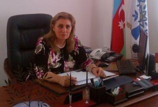 """Millət vəkili: """"Strateji yol xəritəsi uğurlu addımların davamıdır"""" - AÇIQLAMA"""