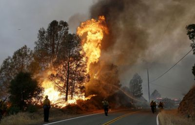Крупные пожары в Новой Зеландии