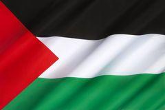 Замминистра иностранных дел Палестины в Азербайджане