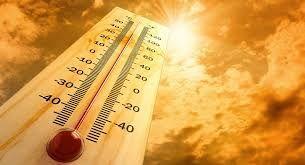 Завтра будет 15 градусов тепла