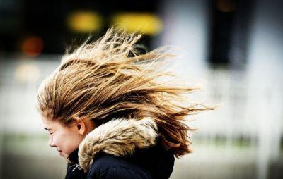 В выходной день усилится ветер